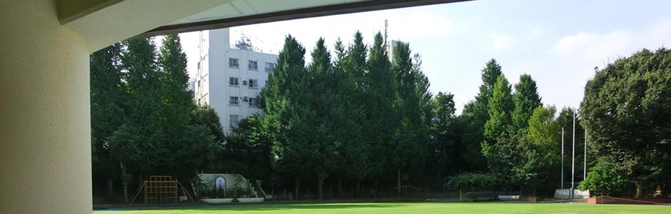 附属小学校03